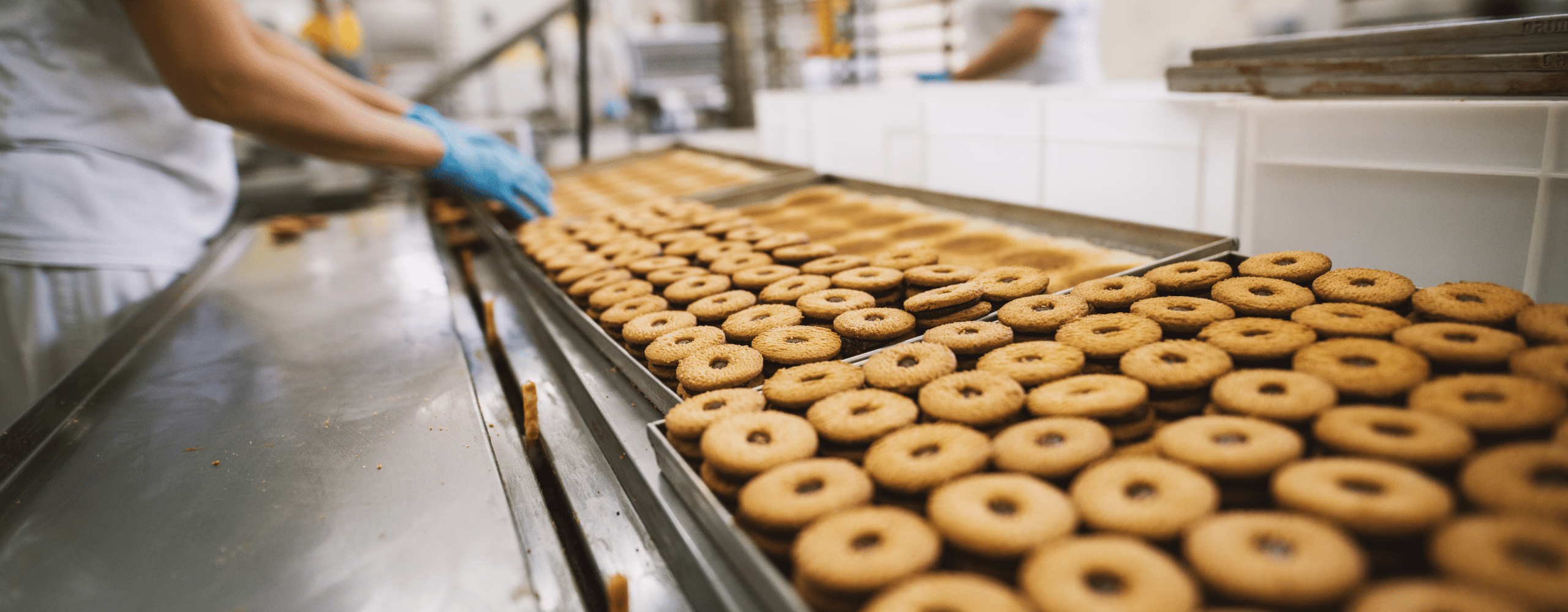 Food manufacturing biscuits
